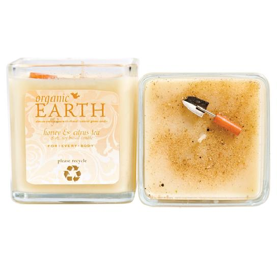 HONEY & CITRUS TEA Organic Earth 8oz Candle For Every Body ...